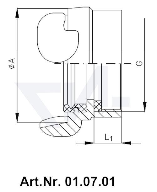 Головка РОТ муфтовая / цапковая с резьбой BSP-(R) с внутренней резьбой тип 01.07.01