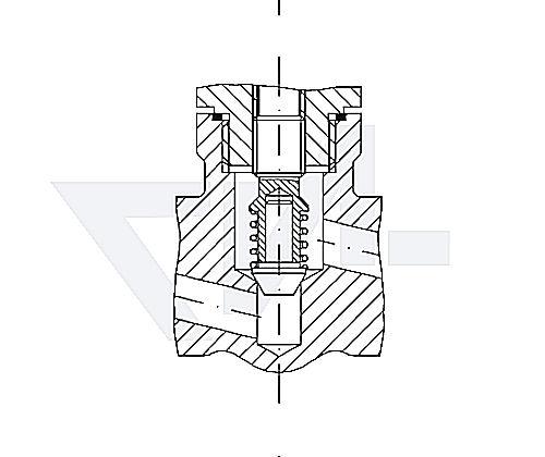 Клапаны невозвратно-запорные с подпружиниванием